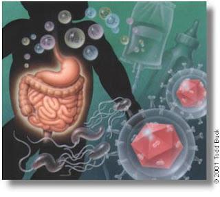 Nursing Diagnosis for Gastroenteritis