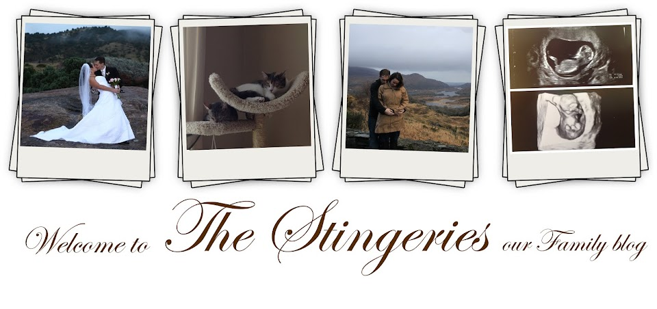 The Stingeries