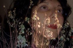 Mi blog en prosa: A veces la musas miran la tierra: