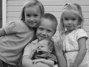 Grandchildren/nephews and nieces
