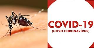 Quem teve dengue recentemente tem imunidade contra o Covid-19?