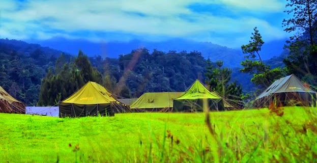 mandalawangi cibodas camping ground