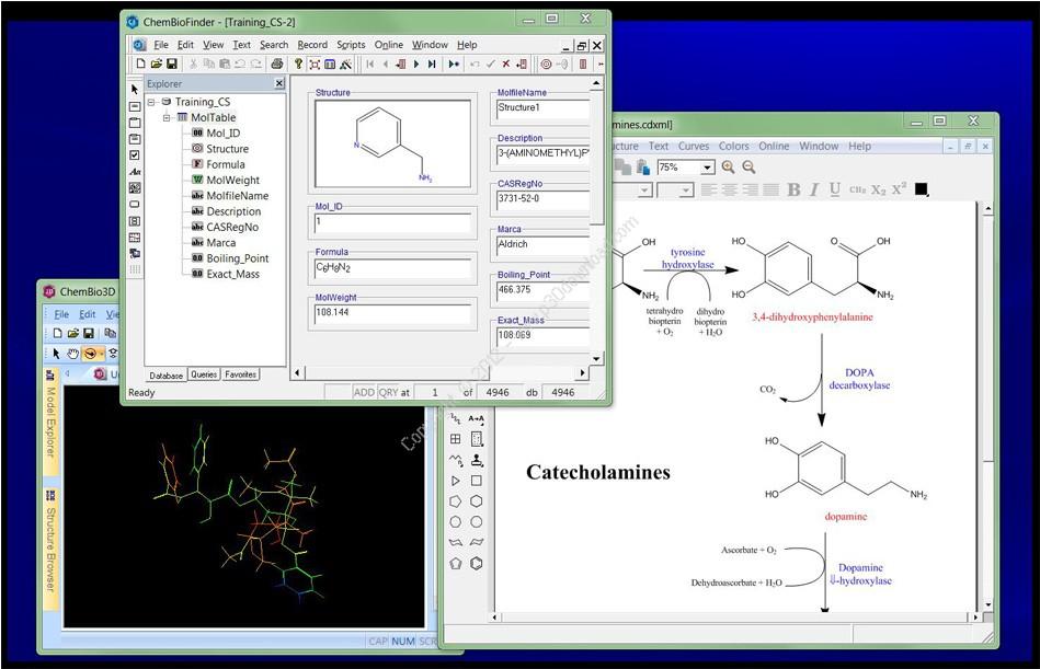 ChemBioOffice Ultra v13.0 Suite المعادلات 1351155968_screensho