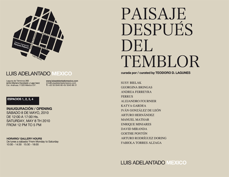 Paisaje después del Temblor (Landscape after the earthquake), 2010
