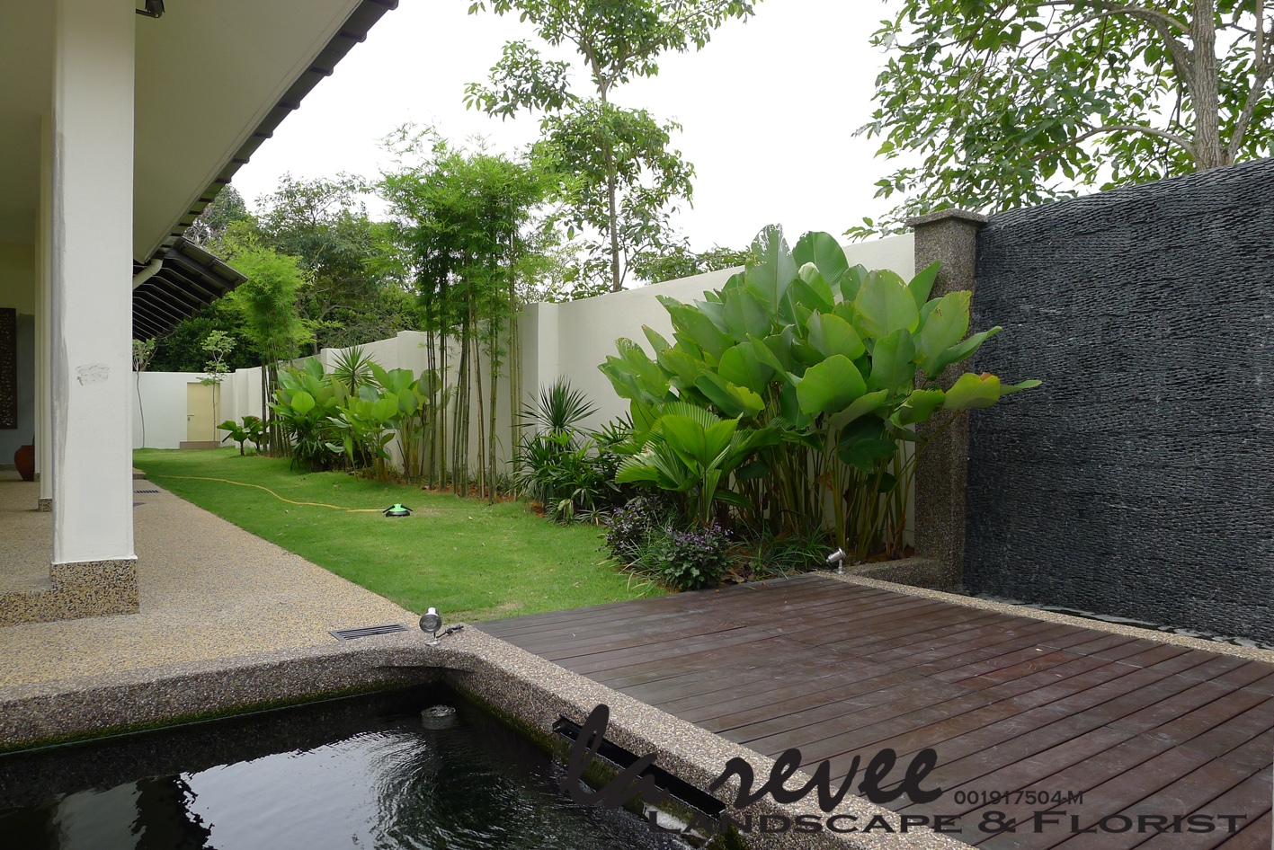 Modern koi fish pond for Modern koi pond design photos
