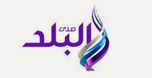 قناة صدى البلد: القناة الرسمية لفلول مبارك المخلوع