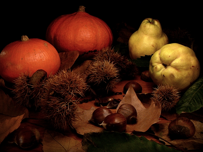 outono_cores_natureza_morta_fotografia_frutos_abóbora_marmelo_castanha