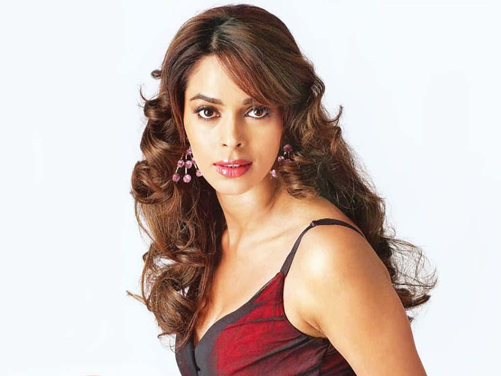 wallpapers mallika sherawat bikini - photo #31
