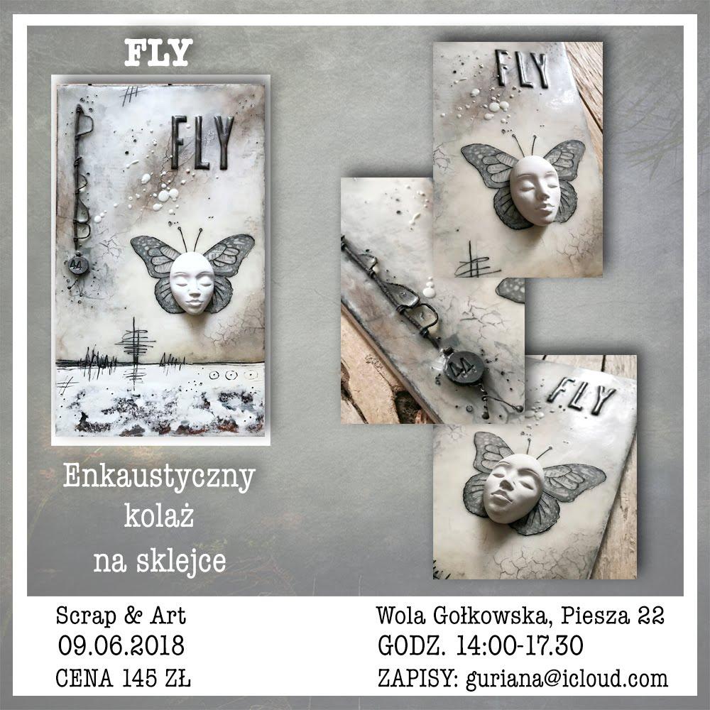 Eankaustyczny kolaż na sklejce : FLY