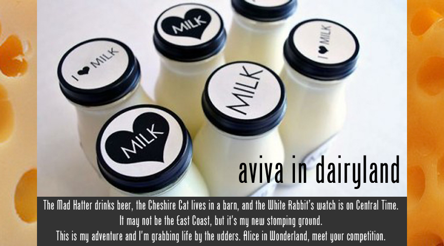 Aviva In Dairyland