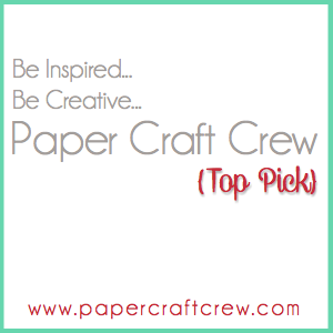 I was a Paper Craft Crew Top Pick!
