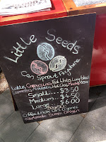 Little Seeds, Latte, Coffee, Adelaide, Coffee Roundup