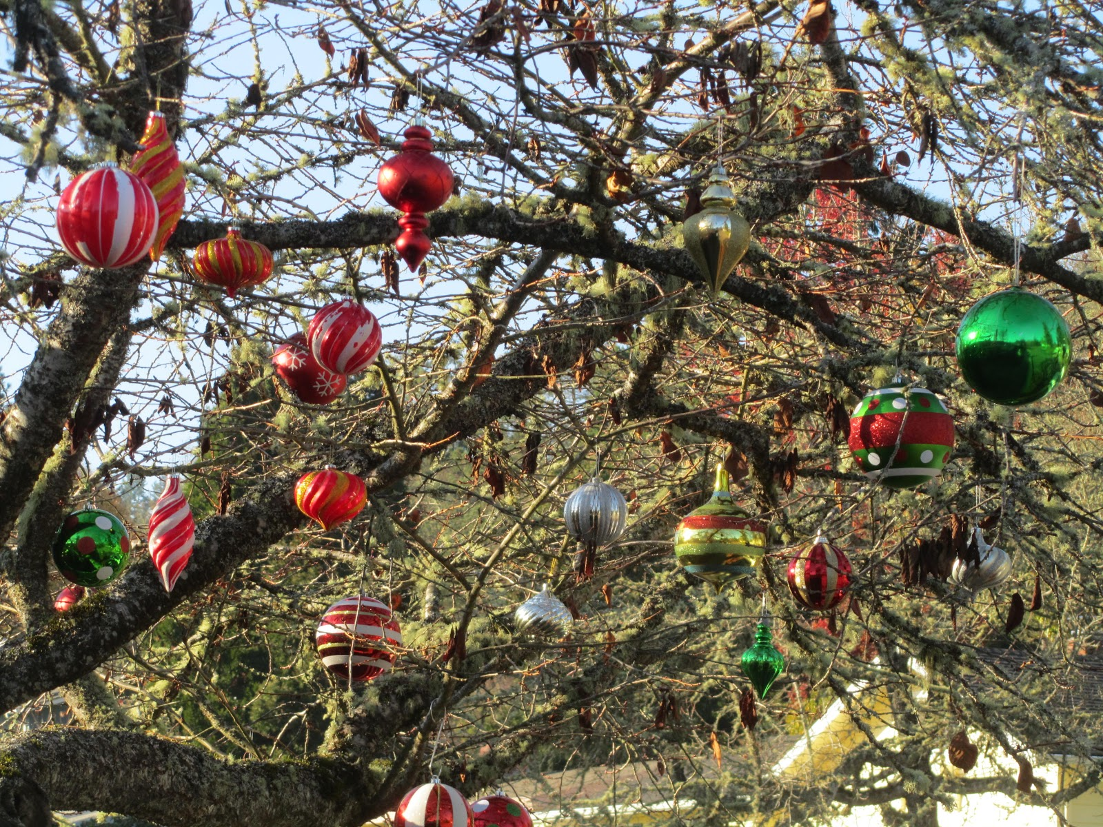 Garden grumbles and cross stitch fumbles christmas here for Outdoor christmas tree ornaments