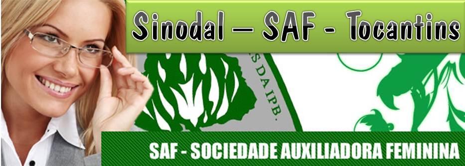 Sinodal - SAF - Tocantins