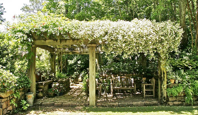 Featured Articles by Jubilant Web: 3 ways to make your backyard a ...