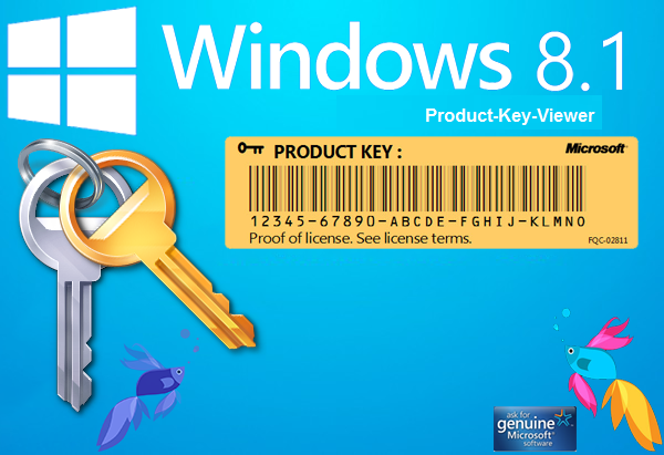 where to find windows 8.1 product key on laptop
