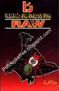 Urdu Novel Raw pdf