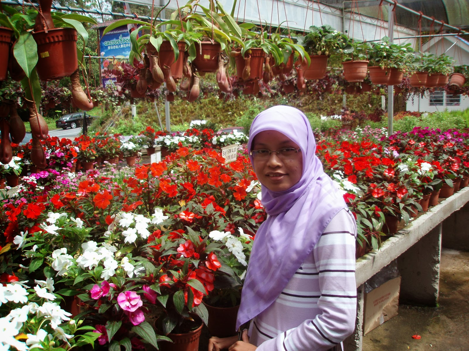 holiday parent and cameron highlands And if there's one thing this short weekend getaway to cameron highlands reminded me of theft etc - these things can ruin a perfectly good holiday.