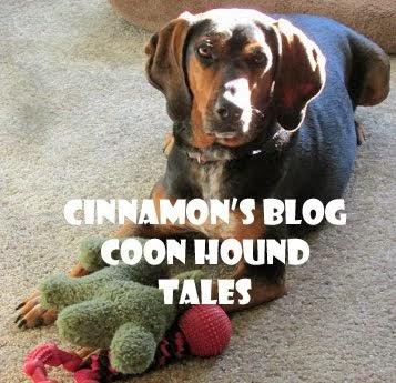 Cinnamon's Blog