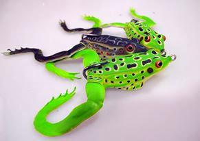 Quentin Combe Savage Gear Nouveautés News 2014 Leurres 3D Frog