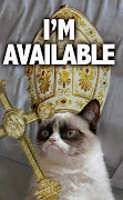 Grumpy cat meets Fleetwood Mac. Grumpy cat meets Fleetwood Mac stevienicks grumpy