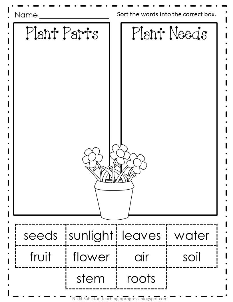 free student plant coloring pages - photo#27