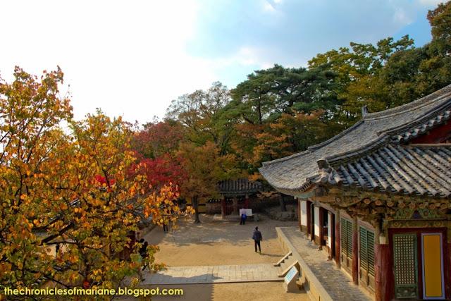 Bulguksa Temple autumn