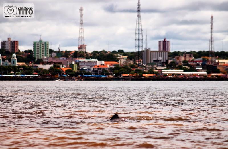Vista de Santarém, de boto-tucuxi e do encontro entre os rios Amazonas e Tapajós, no Pará, na Amazônia