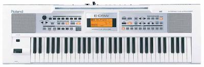 dan Organ Roland E-09W