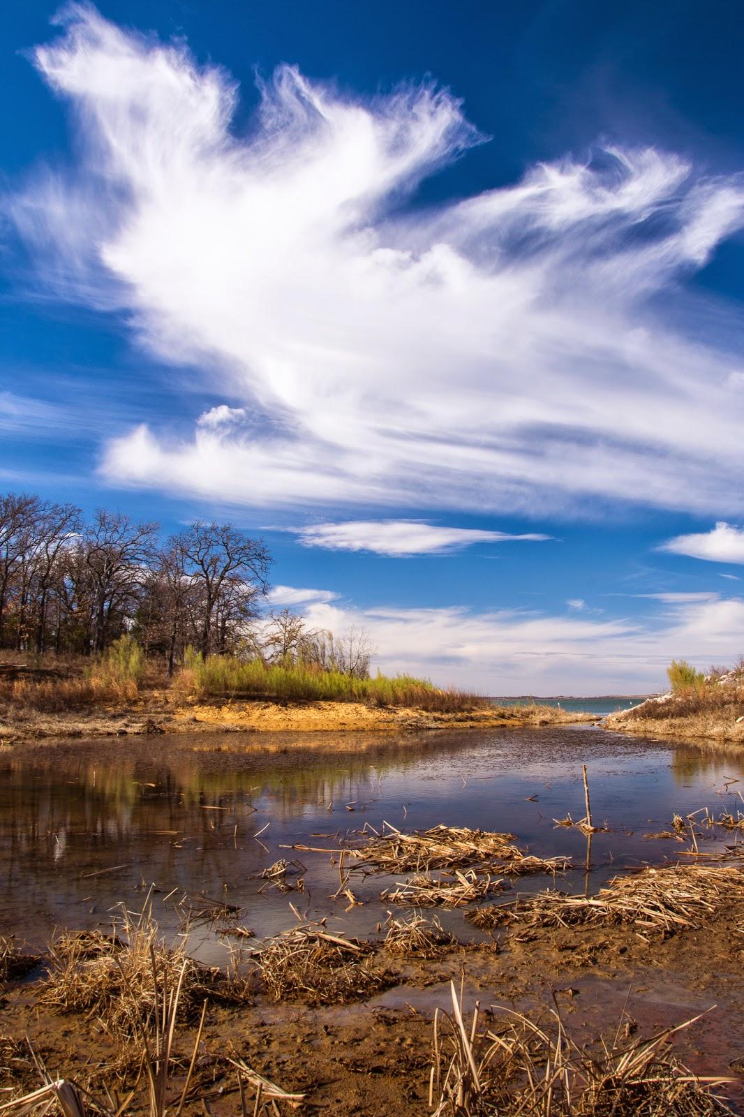 Ray Roberts Lake State Park: Isle du Bois Unit