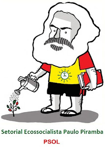 Conheça o Setorial Ecossocialista do PSOL