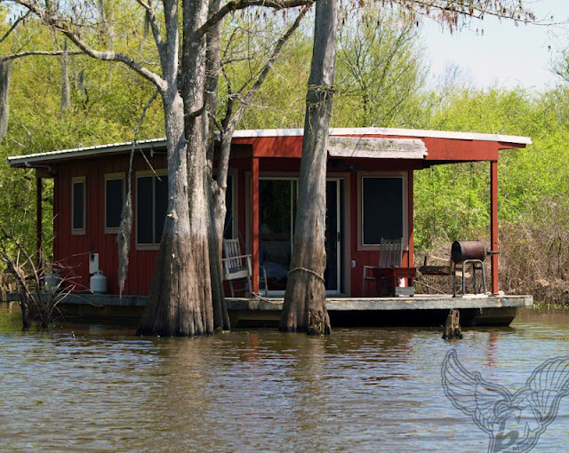 banjo music houseboat - let the good times roll