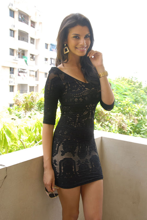gabriela bartante at dcm press meet hot images