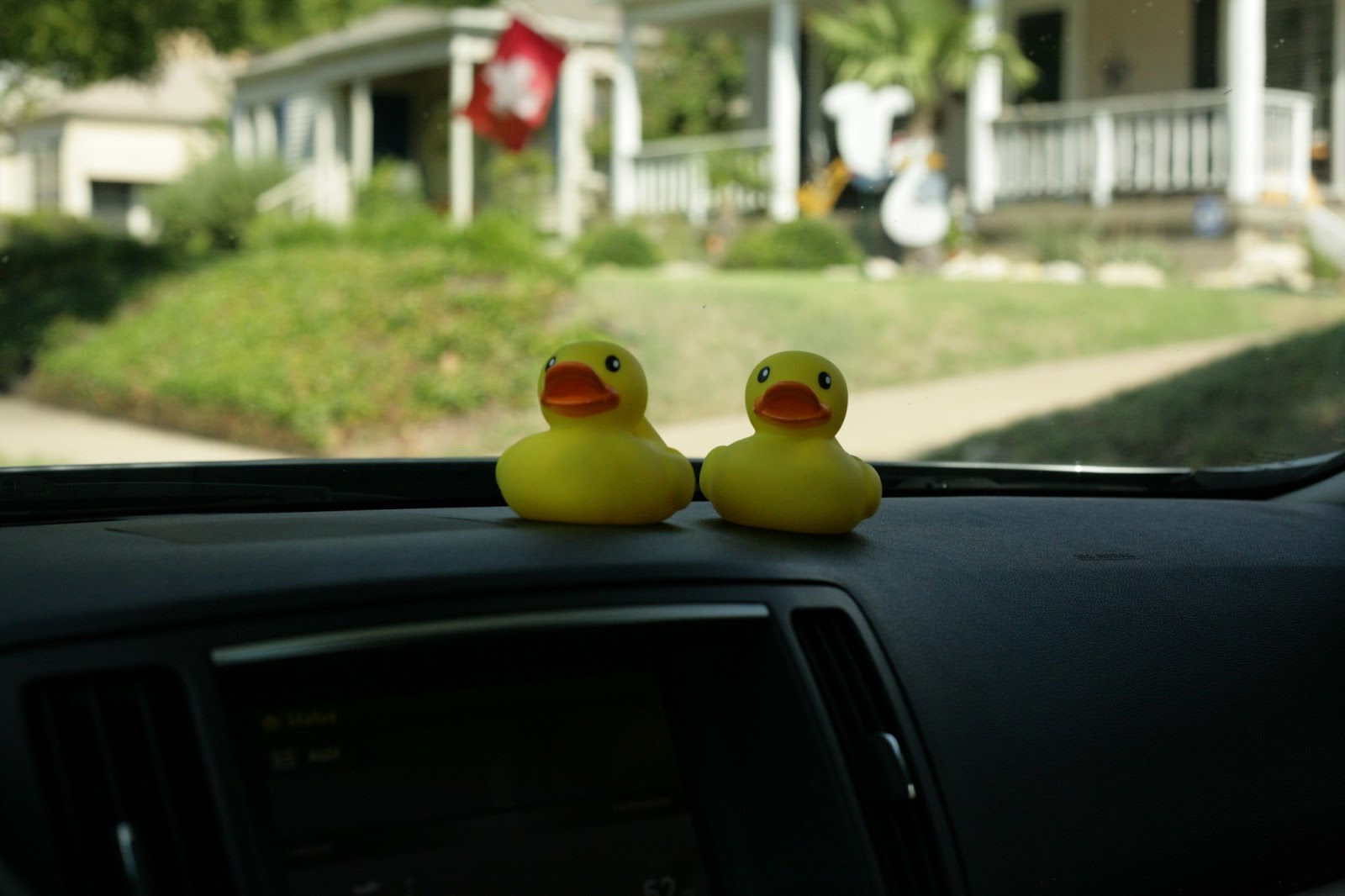 Rubber Duckies Infiniti