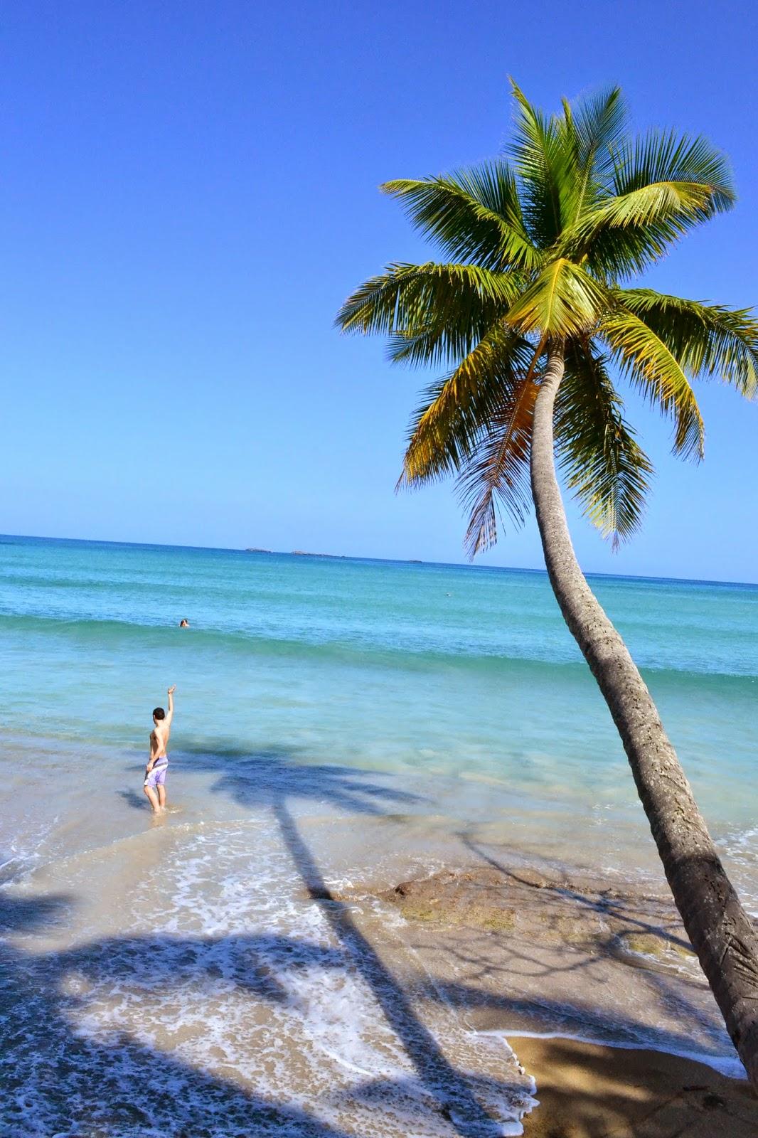 hotel bahía las ballenas, playa bonita, samana, republica dominicana, blog de viajes