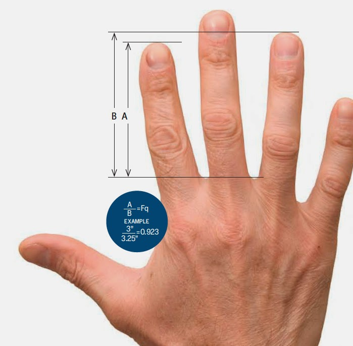 Wanna Be A Great Trader? Finger Size Matters.