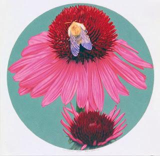 Flores Hiperrealismo Americano Pinturas Increíbles al Oleo