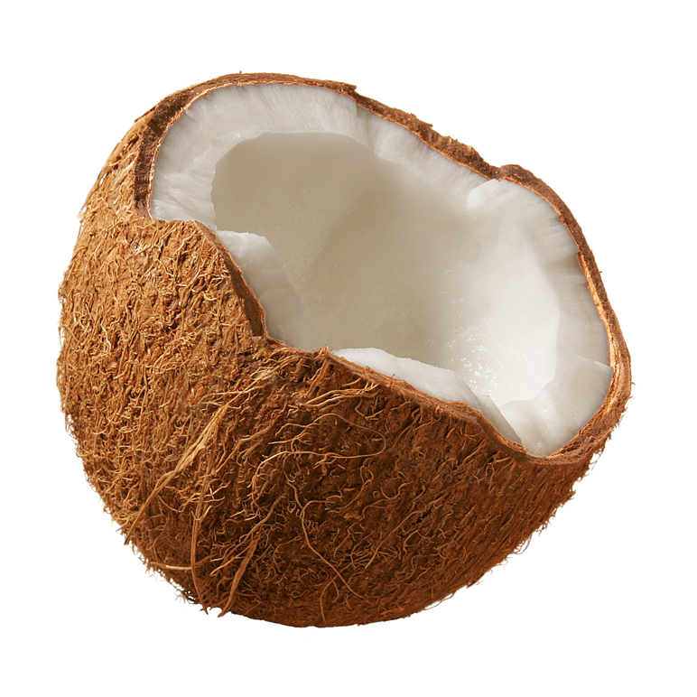 how to say Coconut means