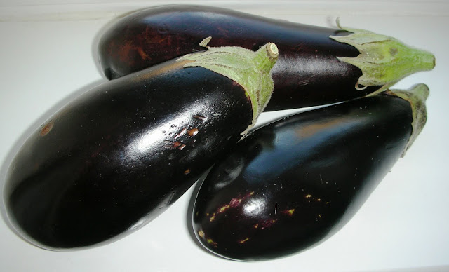 fresh eggplant or aubergine for karniyarik