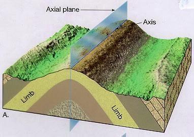 axial plane dan axis
