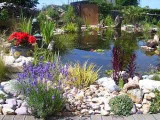 Pompage: Inspirations autour du bassin de jardin