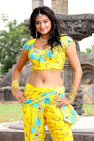 South Indian Actress hot Navel Photo