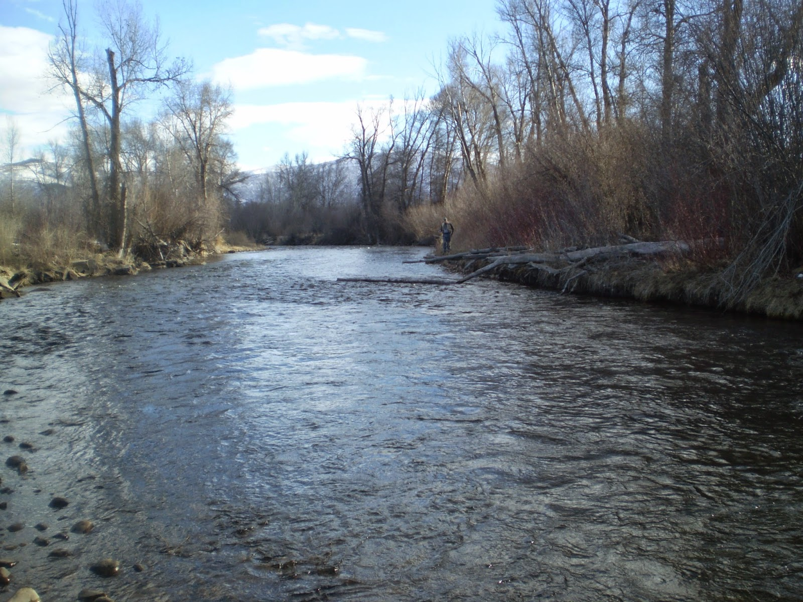 Fly fishing the west with howard fly fishing the lower for Provo river fly fishing