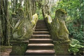 monkey forest dragon bridge