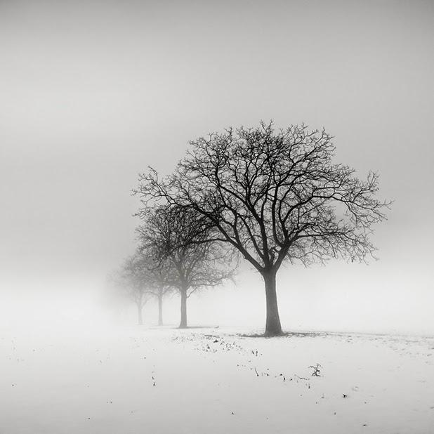britney smith photography louisiana 4MjZbO