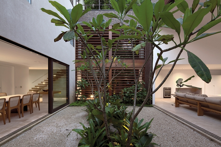 Vegetation in Modern beach house in Brazil