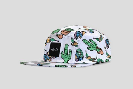 http://www.andclothingstore.co.uk/product/and-skatewear-5-panel-cap