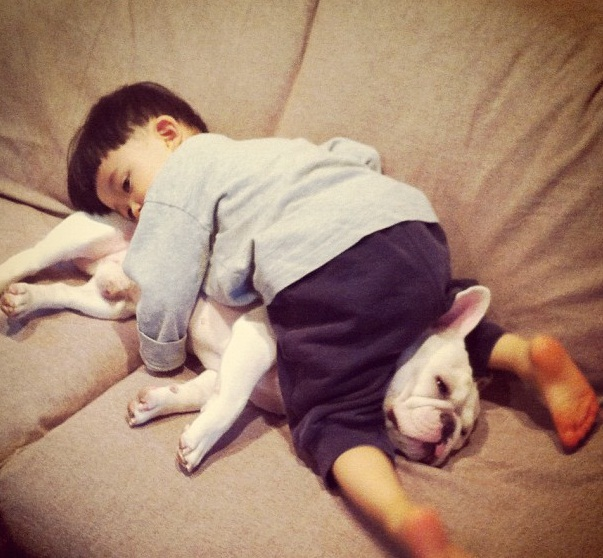 A little boy and his french bulldog are best friends, friendship between boy and his dog, cute dog pictures