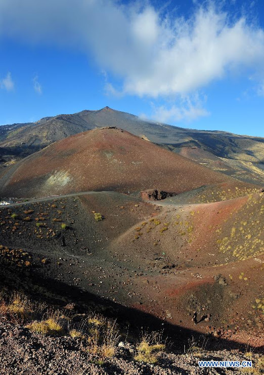 Fertile soil of the volcanic lava (Etna)