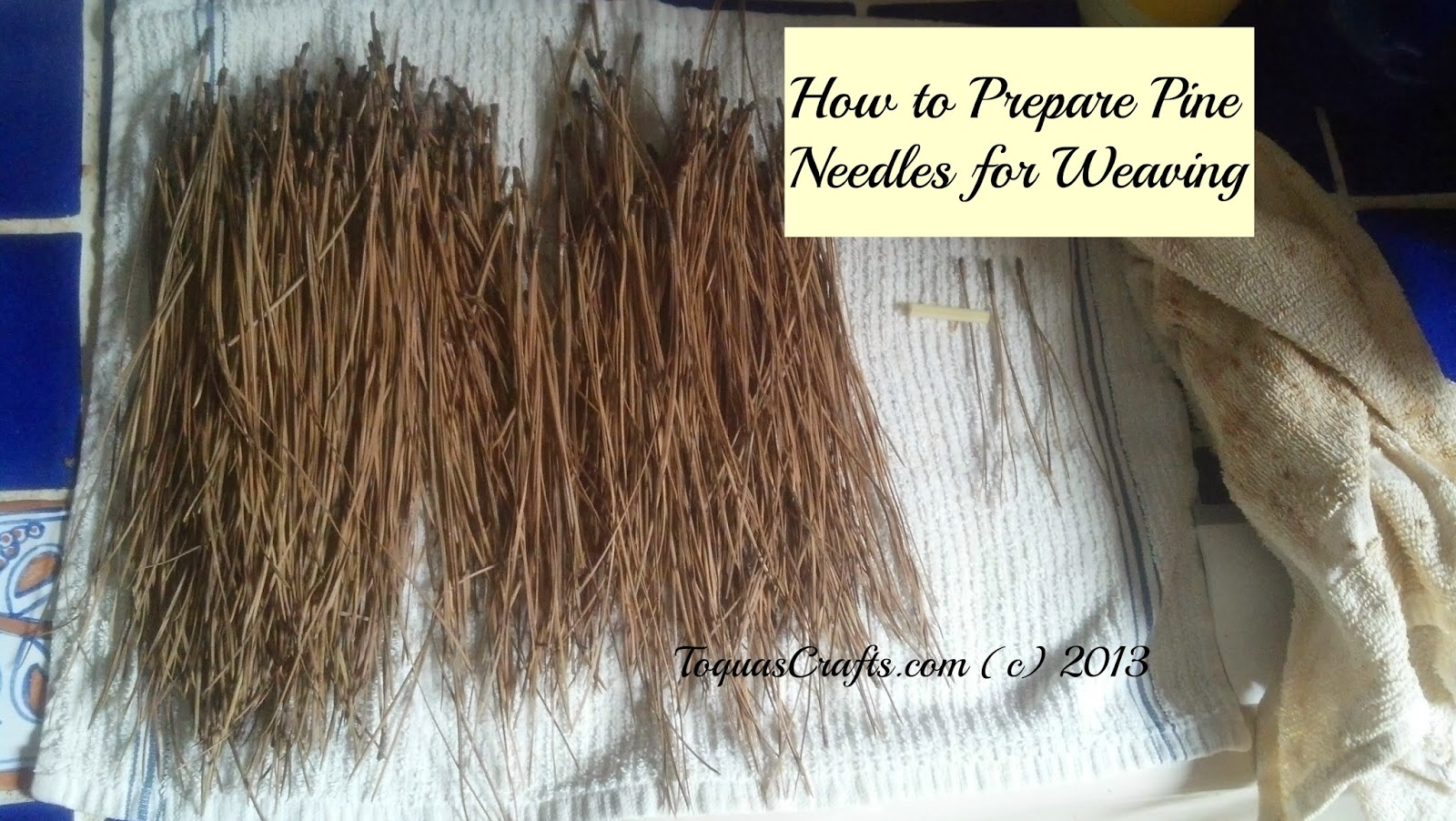 Toquas Crafts How To Prepare Pine Needles For Weaving